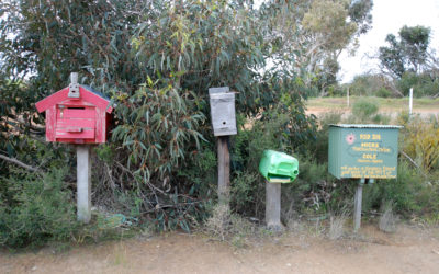 The buzz on the tenants of postbox 321, Kangaroo Island