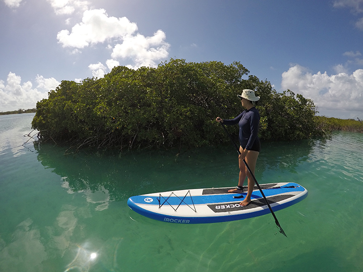 SUP tour Providenciales